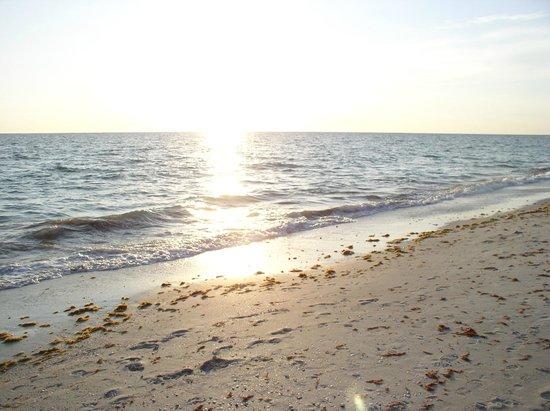 A Beach Retreat: White sand beach