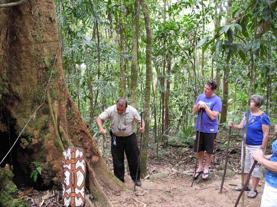 Mossman Gorge: Indigenous guide explaining uses of rainforest flora