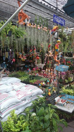 Phranakorn-Nornlen Hotel: Nearby plant market en route to Tha Tewet where you catch the river bus to the Wats