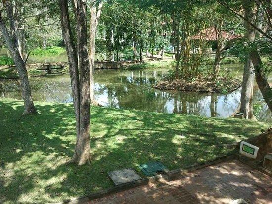Cinnamon Lodge Habarana : Jardines del hotel