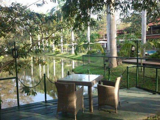 Cinnamon Lodge Habarana : Lugar donde hacen las cenas privadas