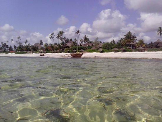 Zanzibar Retreat Hotel: Utsikt fra sjøen