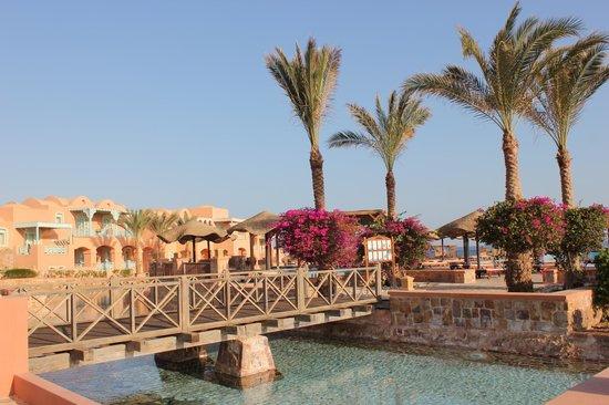 Radisson Blu Resort, El Quseir: vue prise d'une allée entre la terrasse du restaurant et l'espace baignade