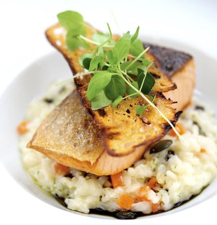 Seehotel Töpferhaus: Salmon with limon risotto