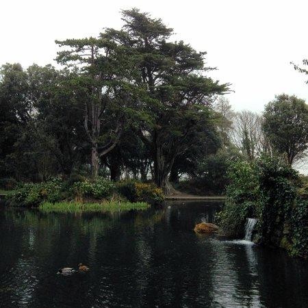 St. Anne's Park, Dublin: Saint Anne's Park. 13.03.2014