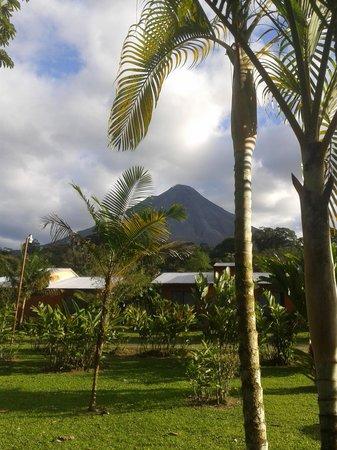 Erupciones Inn Bed And Breakfast: Vue de la chambre