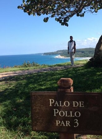 Royal Isabela : Our caddie Edwin who helped us navigate around the course...