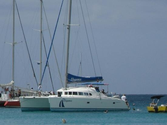 Elegance Catamaran Cruises: Elegance in Carlisle Bay