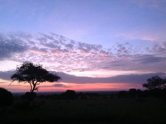 Dunia Camp, Asilia Africa: Dawn - from the camp as we leave on Safari