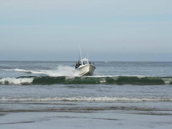 Pacific City Fishing: pacificcityfishing.com