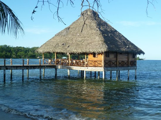 Playa Tortuga Hotel & Beach Resort: Bar