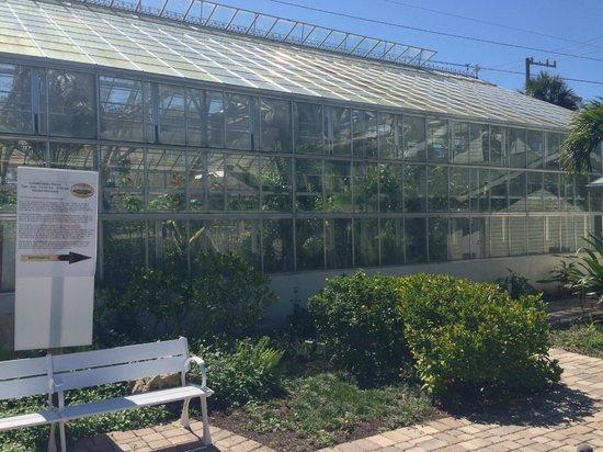 Butterfly Estates: Butterfly conservatory.