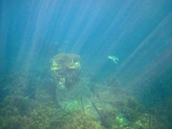 Porto de Santo Antonio Beach (Porto): Navio Eleani Stathatos - encalhando no Porto em 1929, terminando de submergir em 1946.