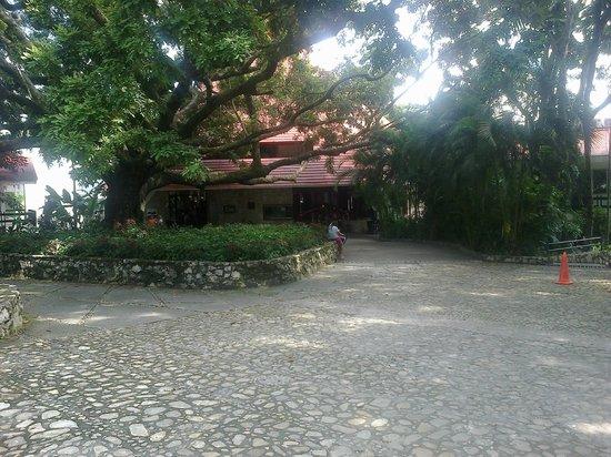 Hotel Mision Palenque: vista del hotel