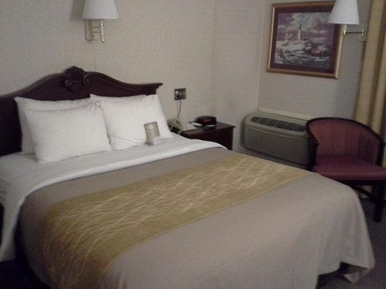 Comfort Inn Middletown: Room