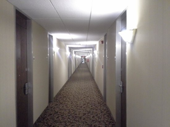 Comfort Inn Middletown: Hallway