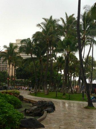 Sheraton Waikiki: Waikiki Strip