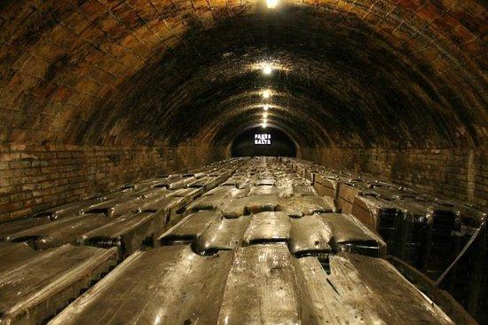 Bodegas Parés Baltà: Cava cellar.