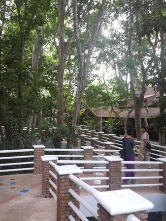 Jungle House Hotel: Some of the rooms