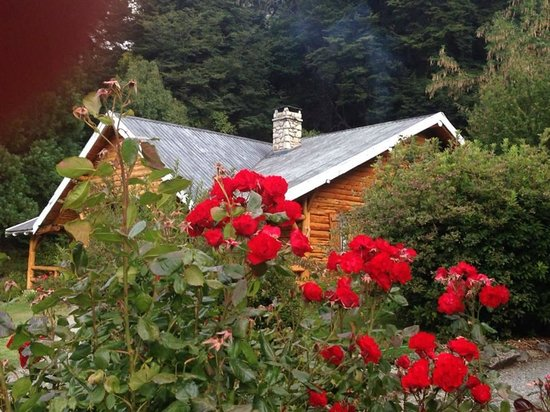 Hotel Tronador: Jardin