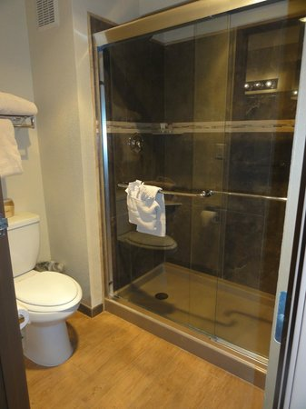 Arroyo Pinion Hotel, an Ascend Hotel Collection Member: Shower