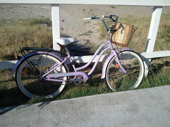 The Waterfront Wynyard : The bike