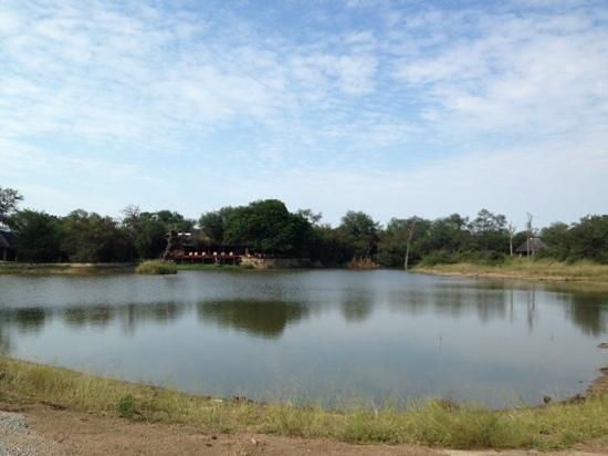 Gomo Gomo Game Lodge: vista del lago