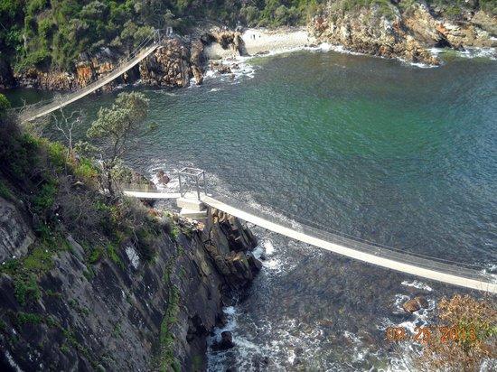 Puente Colgante del río Storm: suspension bridge