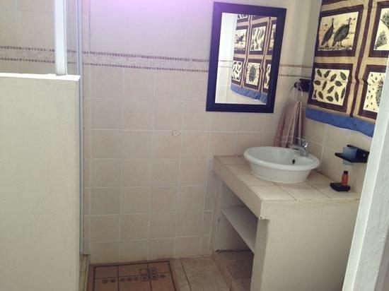 Hippo Pools Resort: baño