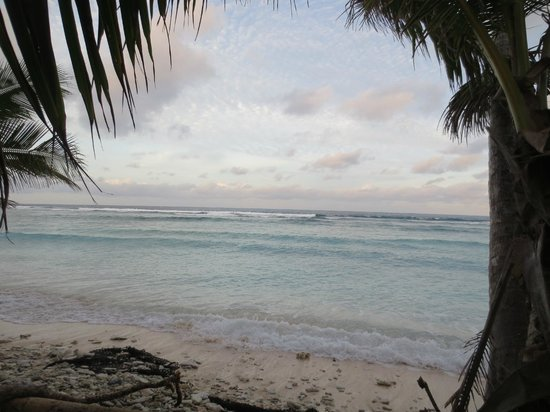 Kosrae Village Ecolodge & Dive Resort: View from our front porch