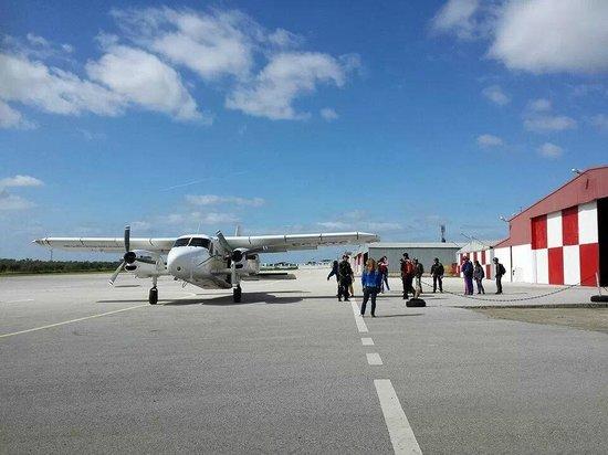 Skydive Spain: Plane