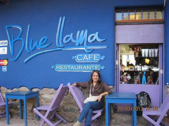 Blue Llama : Disfrutando