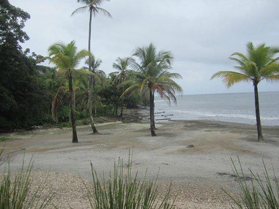 Bala Beach Resort: beach at Bala