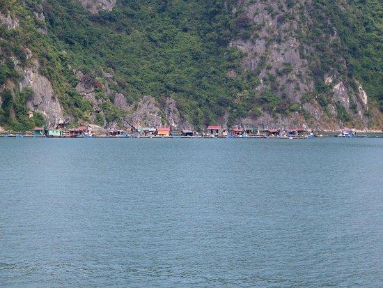 Lan Ha Bay: The 'Fish Farm community'.