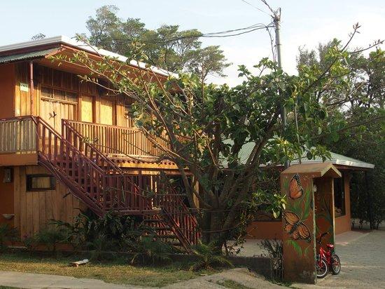 Monteverde Villa Lodge : Upstairs guest rooms.