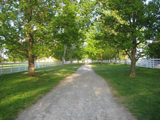 "Shaker Village of Pleasant Hill - The Inn: Main ""street"""