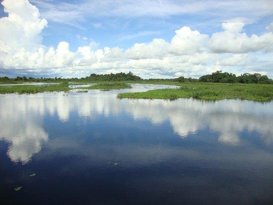 Poconé, MT: Cheia no Pantanal