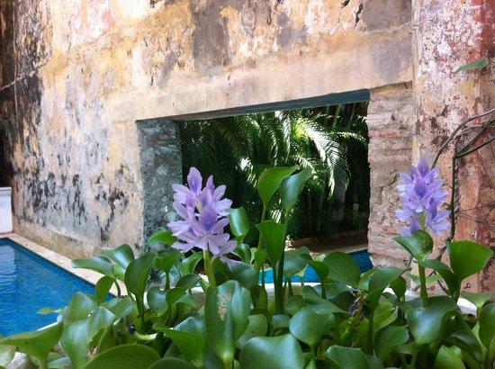 Hotel Casa San Agustin : piscina