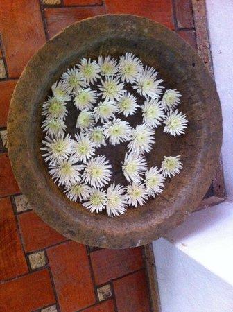 Hotel Casa San Agustin : flores na entrada