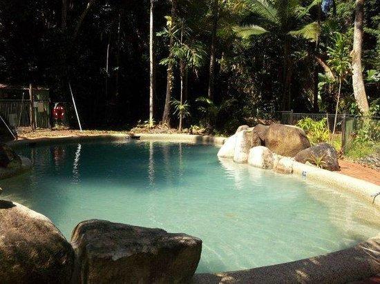 Safari Lodge : Jungle Lodge