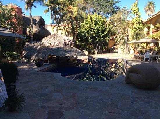 Tropicana Inn: Very relaxing pool area.