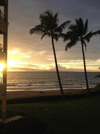 Polo Beach Club: sunset view from #207