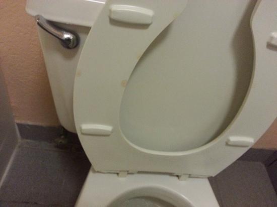 Econo Lodge: nasty stains on toilet