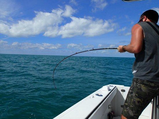 Atlantis House : fishing