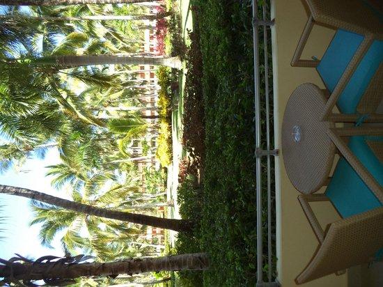 Iberostar Dominicana Hotel: Vista desde el balcón
