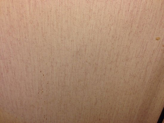 Travelodge Seattle North/Edmonds: Bathroom wall