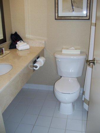 Ottawa Marriott Hotel : bathroom