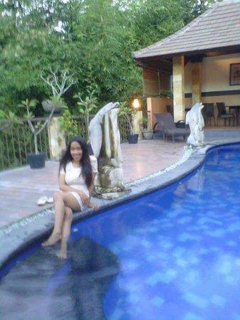Hotel Puri Nusa Indah: pool