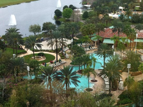 JW Marriott Orlando, Grande Lakes: View of pool area from my room
