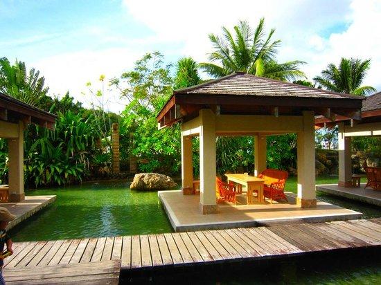 Palau Royal Resort: ラグーンの緑が美しかったです。